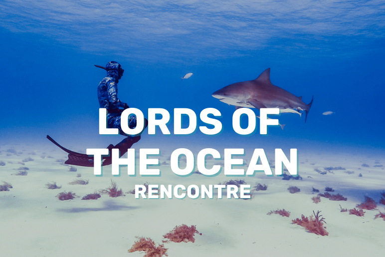 Lords of the Ocean : l'interview